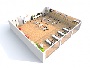 Commercial Fitness Facility Design at Fitness Gallery