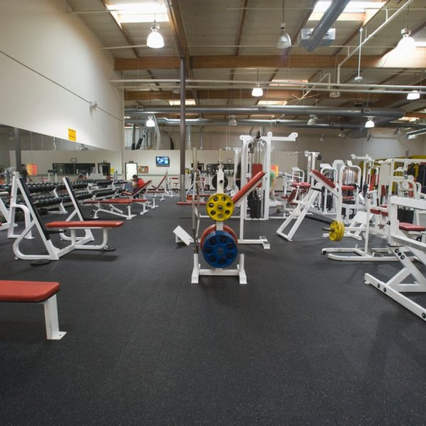 Guardian Flooring by Humane Manufacturing at Fitness Gallery