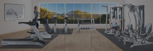 Shop Fitness Gallery in Denver Colorado - Exercise Store