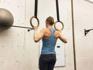 Fitness Gallery Cardio and Strength Training