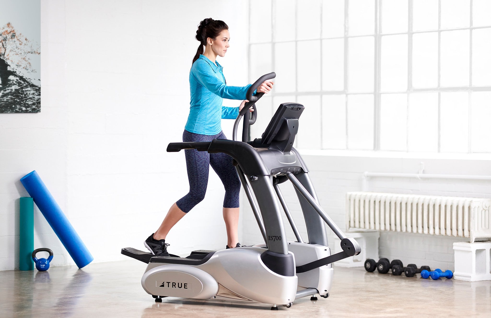 TRUE Fitness Home Elliptical Trainer - Shop Fitness Gallery
