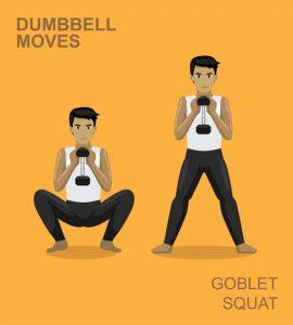 Goblet squat with dumbbells