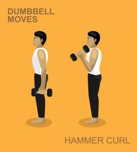 Hammer curl
